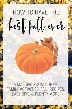 Have the BEST fall e