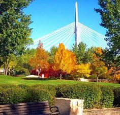 Winnipeg is Beautiful