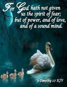 2 Timothy (KJV) For God hath not given us the spirit of fear; but of power, and of love, and of a sound mind.Thankyou lord so much everyday on the miracles you are working on me. Religion, Bible Scriptures, Bible Quotes, Biblical Quotes, Scripture Verses, Faith Quotes, Picture Quotes, 2 Timothy 1 7, Spirit Of Fear