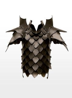 Dragon Slayer Leather Armour black