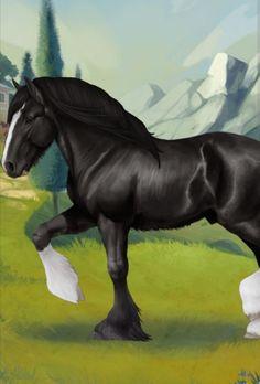 Shire csődör Horses, Animals, Animales, Animaux, Animal, Animais, Horse