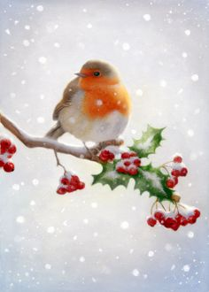 Leading Illustration & Publishing Agency based in London, New York & Marbella. Christmas Bird, Christmas Scenes, Christmas Animals, Vintage Christmas Cards, Christmas Pictures, Xmas Cards, Watercolor Christmas Cards, Christmas Drawing, Christmas Paintings