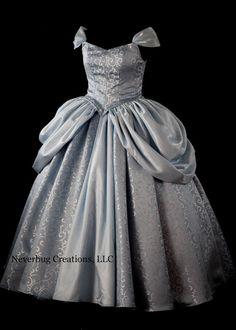 Adult Cinderella New Parks Custom Costume