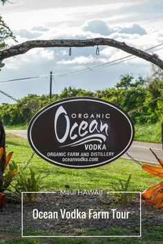 Ocean Vodka Organic Farm in Maiu Hawaii.  Things to do in Maui. Maui things to do.