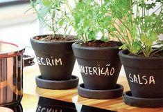 Em uma horta em casa podem ser plantados muitos vegetais e também temperos, como: salsinha, hortelã, alecrim, manjericão, cheiro verde, pimentão e muitos ou