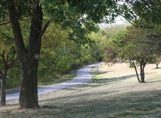 Trail of the week: Queeny Park Trails