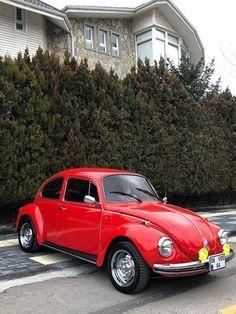 vw1973 Beetle