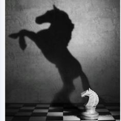 Chess  piece casting shadow