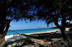 ウドノスビーチ(与論島)『島の散歩』