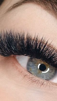 How much do you know about layering?🧐 Proper volume training should teach you about lash layering, but did you know a lot don't even bother? But this is vital is you want to achieve a technically correct lash set! Each of the lashes, 1, 2, 3 represent a different layer: 1 - bottom layer 2 - mid layer 3 - top layer As you can see, the bottom layer is further from the skin. Well, did you know if you are too close to the lash line you can actually irritate the client's skin? Certificate Of Completion, Learning Courses, Volume Lashes, Eyelash Extensions, Mink, Did You Know, Eyelashes, Layering, Braids