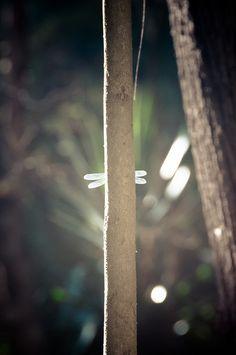 Do you see me? by Luisus Rasilvi, via Flickr.