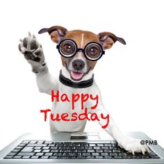 Tuesday #MyPmb
