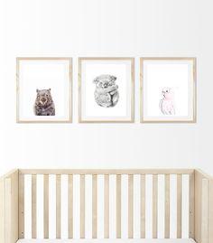 20 Best Australian Themed Nursery Ideas Images