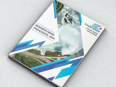 2014 Niagara Falls Annual Report