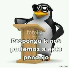 Funny Spanish Memes, Spanish Humor, Reaction Pictures, Best Funny Pictures, Cute Memes, Funny Memes, Pingu Memes, Black Spiderman, Love Phrases