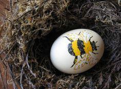 easter+egg,+bee.JPG (1600×1187)
