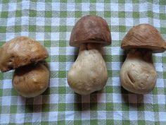 Funghi di...legno!