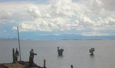 Las Salinas, sobre agua ( Jujuy - Argentina) Beach, Water, Outdoor, Argentina, Gripe Water, Outdoors, The Beach, Beaches, Outdoor Games