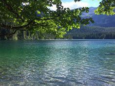 Qué ver en Trento? | Lago di Tovel y Lago di Caldonazzo - Bocas de Pato River, Outdoor, Lakes, Italia, Natural Playgrounds, Mouths, Adventure, Fotografia, Outdoors