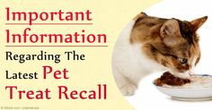 A brand of commercially available cat treats has been recalled due to the presence of low levels of propylene glycol, a chemical banned by the FDA. http://healthypets.mercola.com/sites/healthypets/archive/2016/01/11/propylene-glycol-pet-food.aspx