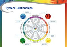 Relationships Between MBTI, DISC and Insights | Richard Sivers Associates