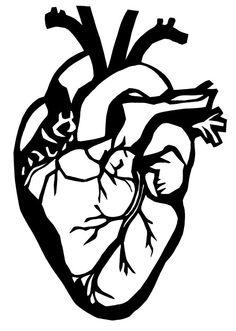 Original Paper Cutting ANATOMICAL HEART 2 8 x 10 by SheMakeR, $17.00