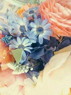 bit of color palette Shades Of Peach, Blue Peach, Coral Blue, Peach Colors, Orange Color, Jaune Orange, Farm House Colors, Floral Artwork, Color Harmony