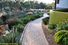 Australian Native Garden Inspiration - Cloudy Hill Garden