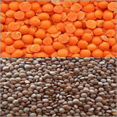VRHM & CO. from Chhattisgarh, India is a manufacturer, supplier and exporter of Masoor Dal at reasonable price. Masoor Dal, Organic, Lentils, Food, Products, Essen, Lens, Yemek, Beauty Products