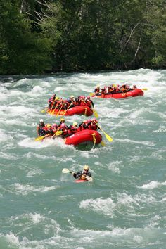 May & June = Max Whitewater Whitewater Rafting, 1st Night, Glamping, June, Boat, Dinghy, Go Glamping, Boating, Boats