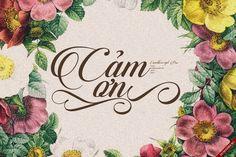 [Script] Candlescript Pro Việt hóa