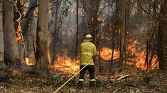 Australia bushfires: Fresh warnings in Queensland and New South Wales - BBC News Australian Defence Force, New South, Sunshine Coast, North Shore, Natural Disasters, Bradley Mountain, Climate Change, Battle, National Parks
