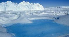 Antártica Chilena.  www.urgente24.cl