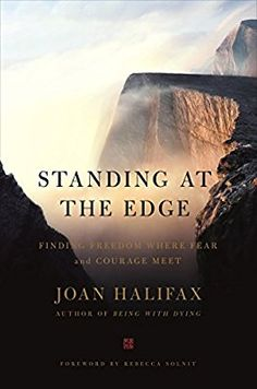 Download ebook when the scientific secrets of perfect timing by standing at the edge amazon joan halifax 9781250101341 fandeluxe Image collections