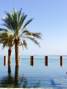 Oman   There's nothing to keep you apart from the sea. credit: Six Senses Zighy Bay. see on Fb https://www.facebook.com/SinbadsOmanPocketGuide #Oman #travel #myOman #TravelToOman