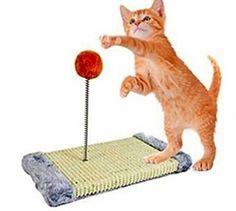 Cat Scratch  Activity Pole Centre Climbing Play Sisal Scratcher Toy