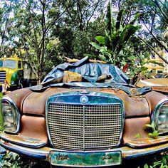 Mercedes 600 Landaulet Limousine
