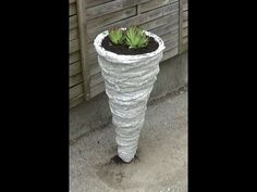 Pflanzentuete oder Beton Kegel