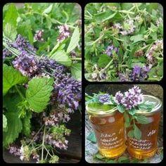 Levandulovo - meduňkovo - dobromyslový sirup Bylinkové zahrádky jsou v plném květu, včelky pilně sbírají pyl, vzduch sladce voní.... Co s úrodou, kterou sklízíme 3x do roka? Vyzkoušejte sirup neboli bylinkovou šťávu. Postup: Nasbírejte si stejné díly čerstvé meduňky, dobromysle /nebo mateřídoušky/ a poloviční díl levandule. Meduňku a dobromysl pokrájejte cca na 1-2cm kousíčky, levandulové…