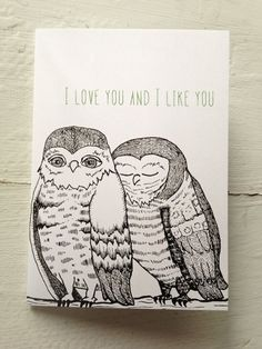 "Illustrated Blank Greeting Card - Owls - ""I Love You and I Like You"""