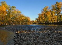 Boise River.  We love exploring the river banks and walking the trails nearby!