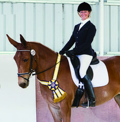 Mule Earns Invitation to US Dressage Finals. Courtesy: Mules and More Magazine, Bland, MO (USA).