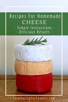 Simple Homemade Cheese Recipes Fermenting for Foodies Simple Homemade Cheese Recipes Fermenting for Foodies Tina Wolf badwolftina Eating My Way Around The World 12 recipes for nbsp hellip Recipes homemade How To Make Cheese, Food To Make, Making Cheese, Rennet Cheese, Cheese Wax, Cheese Fruit, Cheese Recipes, Cooking Recipes, Vegan Recipes