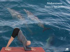 Makarasana. Postura del delfín