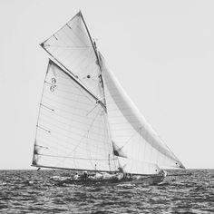 Classic sailing yacht @ Vele d'epoca Imperia - Photo Marco Destefanis  #sailing #yacht #classicyacht #vintageyacht #vintagesailing #sailingyacht #sailingboat #classicsailing #veledepoca #veledepoca2016