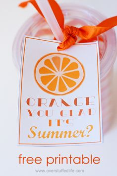 Looking for a cute end of year teacher gift, or just something fun to give your friends to celebrate the beginning of summer? Try this adora...