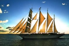 Star Clippers - Beautiful sailboat.
