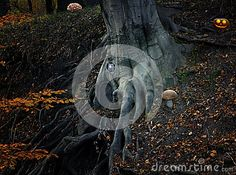 Fairy tale with elf house and pumpkin in the forest