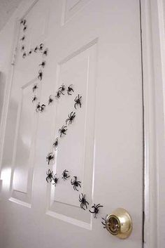 DIY your own spider trail with plastic spider rings. …