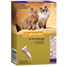 Bayer Advocate macskáknak 4-8 kg - 1.980 Ft